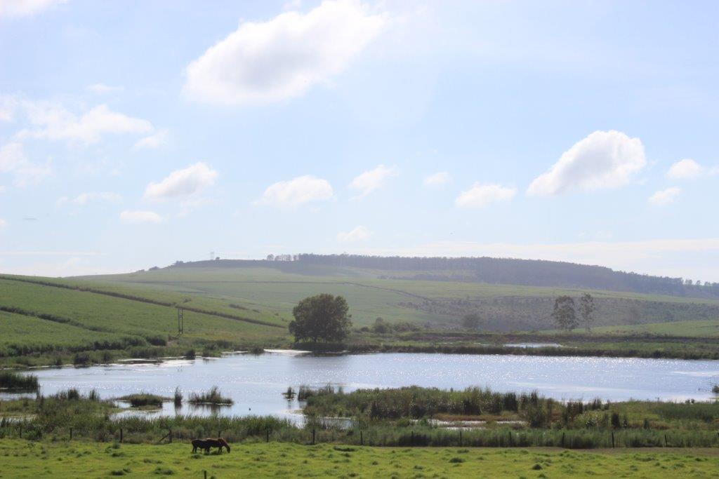 dam in nature